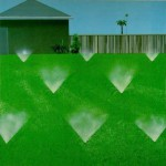 diamond-lawn