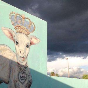 lamb-and-storm